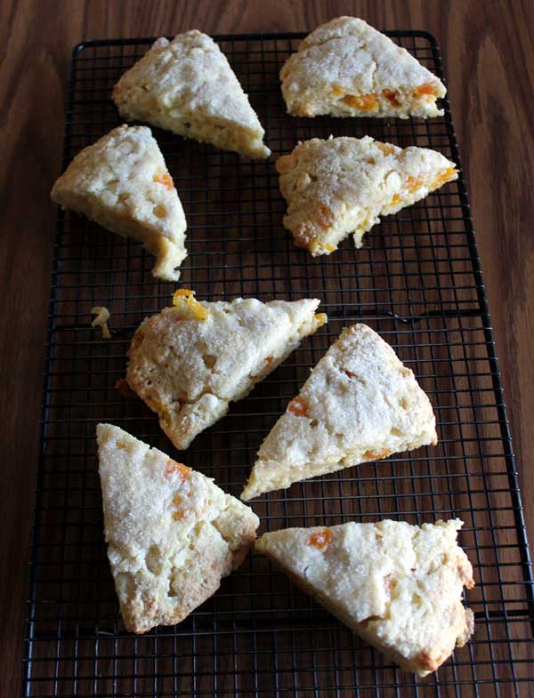 White Chocolate Apricot Scones - Passing The Relish