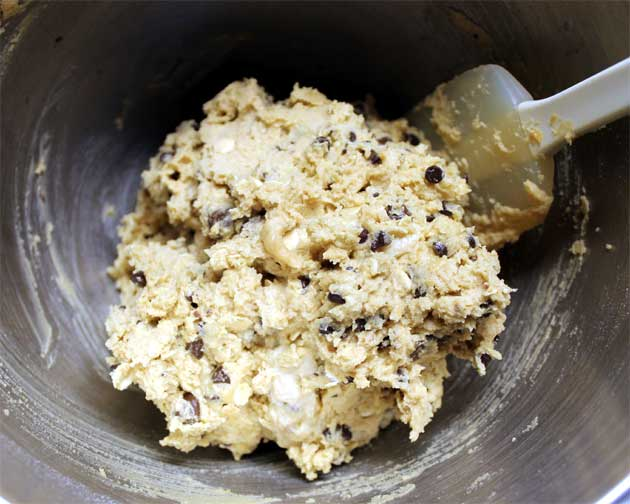 peanut butter chocolate chip oatmeal cookie dough